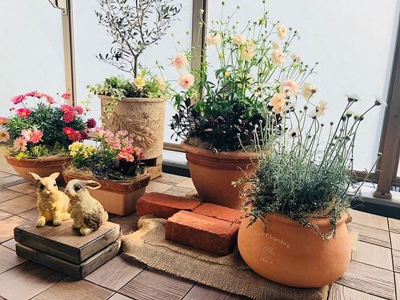 福岡店お庭.jpg